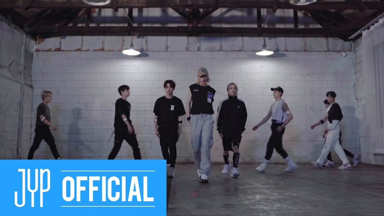 "Stray Kids ""Back Door"" Dance Practice Video"