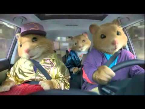 """Kia Soul Commercial >> What Is Hamsters? (What is love """"A Night at roxbury"""" 's ..."""