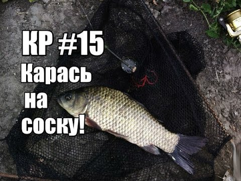 рыбалка на пробку прикормка