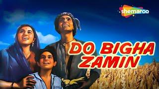 Nirupa Roy Hit Movie 'Do Bigha Zamin'  - Balraj Sahni | Jagdeep | Old Classic Movie