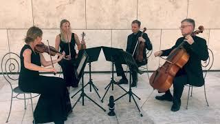 Solo, duo, trio, or quartet?