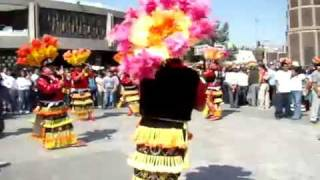 Danza De Los Matlachines Loreto Zacateca...