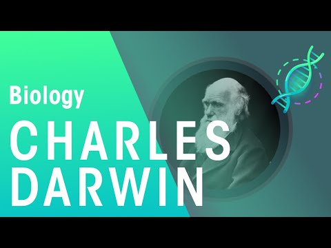 Charles Darwin's Observations | Biology for All | FuseSchool
