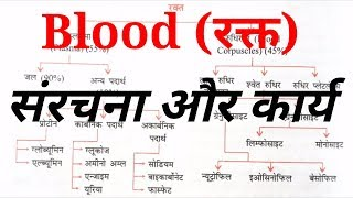 Blood: structure, element, functions || SSC, PSC, RAILWAY, VYPAM