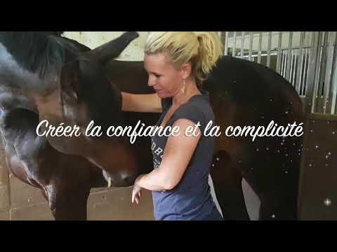 Petite vidéo sur mes soins chevaux.