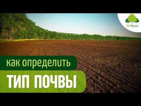 Типы почвы, ее состав и показатели. Почвоведение для ландшафтного дизайна