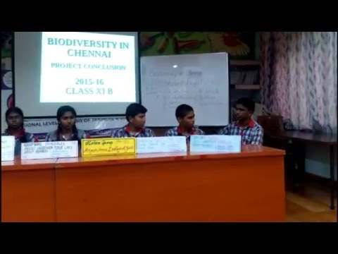 Group Discussion by XI-B, KV Ashok Nagar on Biodiversity in Chennai
