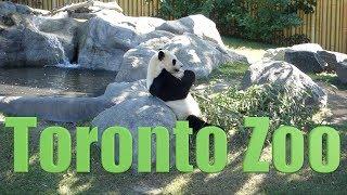 Canada 58 - Toronto Zoo - Zoological Park - Animal Park