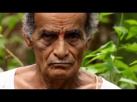 Vaidya Narayana Murthy's herbal cancer treatment