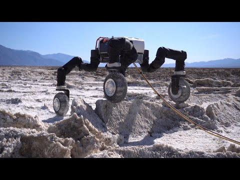 Planetary Exploration Robots: Challenges and Opportunities - IROS 2020 Workshop