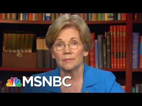Elizabeth Warren: Donald Trump's Agenda Moving Forward Despite Russia Probe | The Last Word | MSNBC