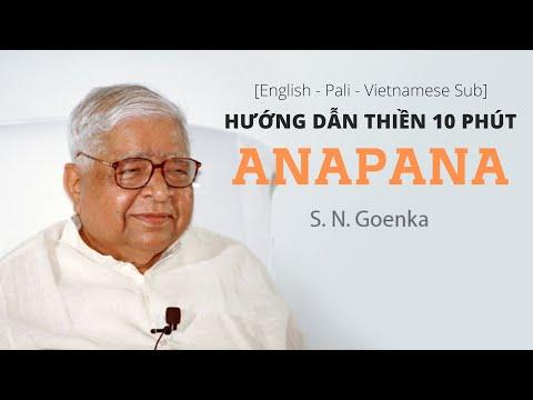 [English - Vietnamese Subtitle] Hướng Dẫn Hành Thiền Anapana 10 Phút - Thiền Sư Goenka