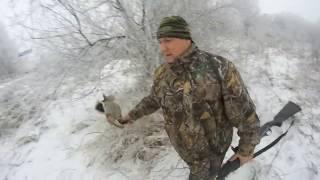 Тропление зайца по свежему снегу