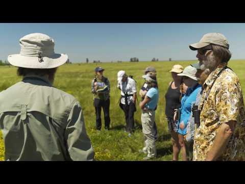 video:The California Naturalist Program: Community