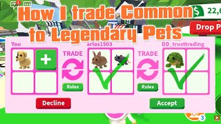 How i Trade Coṁmon to Legendary pets in Adopt Me + 10kSubs MASSIVE GIVEAWAYS