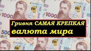 13200 рублей в гривнах цена квартиры в дубае цены