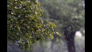 В Башкирии ожидается сильный ветер и пасмурная погода