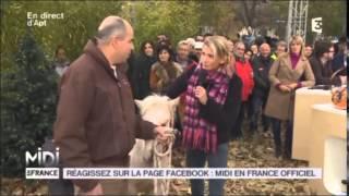 FR3 MIDI EN FRANCE  Equihomologie au LUCKY HORSE à Mazan