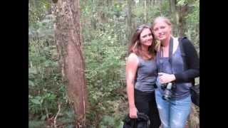 New Zealand - Travel around Kerikeri (part 2)