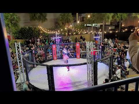 PRIZE MMA FIGHTS   [MOBILE STRETCH THERAPY LLC STAFF]