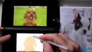 3ds Nintendogs + Cats (cavalier King Charles Spaniel)