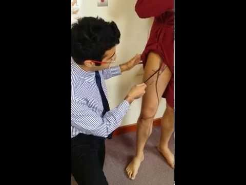 3. LL Lumbar Plexus - Femoral Nerve, Saphenous nerve
