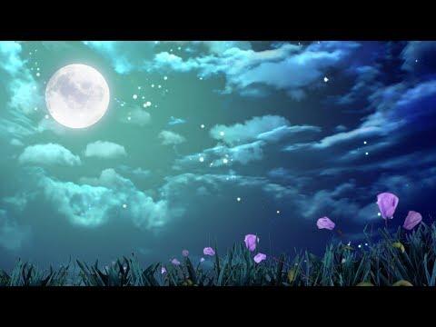Música Para Dormir Profundamente Y Descansar La Mente Música Relajante Y Tranquila Para Dormir Youtube