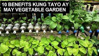 10 Benefits Kung Tayo Ay May HOME VEGETABLE GARDEN