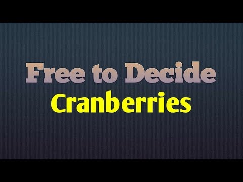 Free to Decide | Cranberries | Lyric Video mp3