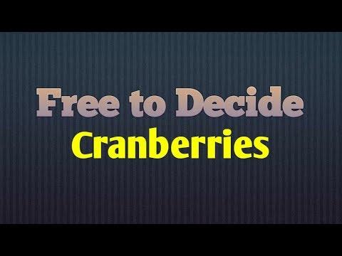 Free to Decide | Cranberries | Lyric Video