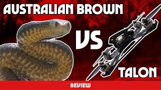 HUGE AUSTRALIAN DEADLY SNAKE VS RACING DRONE - Karearea talon PR review