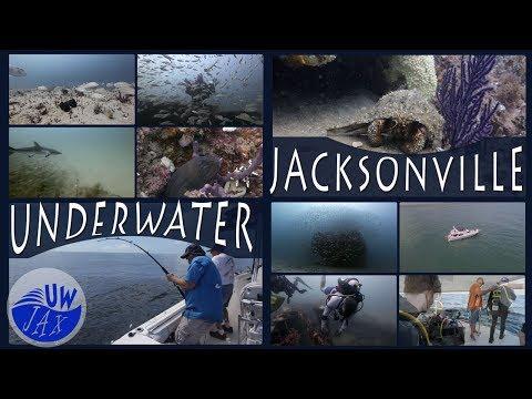 Underwater Jacksonville Florida Offshore Secrets