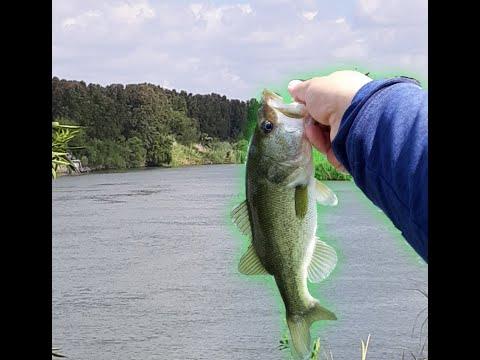 Bass Fishing The Rio Grande River