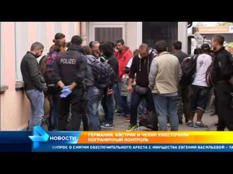 ЕС ввел новые правила получения шенгенских виз для граждан России