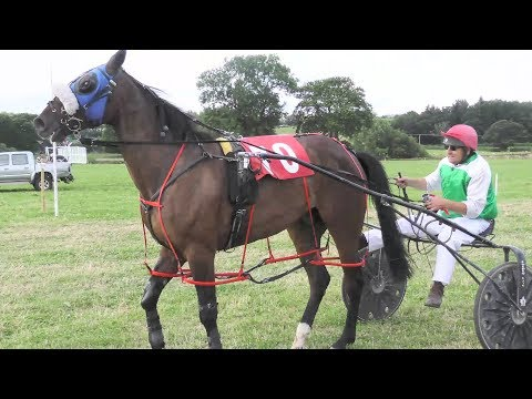 CAERSWS HARNESS RACES 2019 FREE FOR ALL RACE