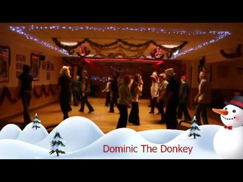 DOMINIC THE DONKEY LINE DANCE 20131211082650
