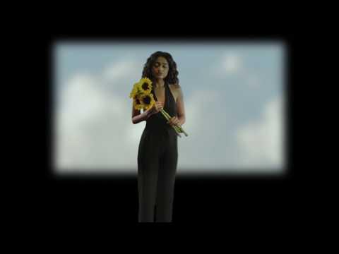 Dana Williams - No Pressure (Official Video)