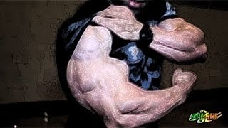 BODYBUILDING - Day IN Day OUT