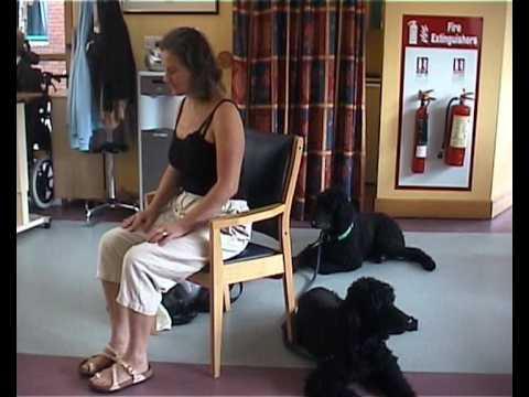 Pelvic Floor Amp Legs Seated Exercises For Senior Fitness Youtube