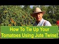 Tips and Ideas on How-to Tie Up Your Tomato Plants Using Twisted Jute Twine