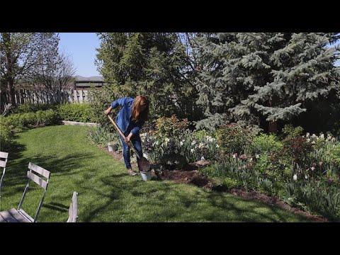 Download Planting a Few More Perennials in My Parent's Garden! 🥰💚🌿// Garden Answer