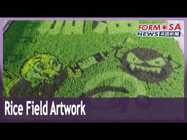 Rice field artwork in Miaoli urges Taiwan to 'Hang in There' through COVID-19