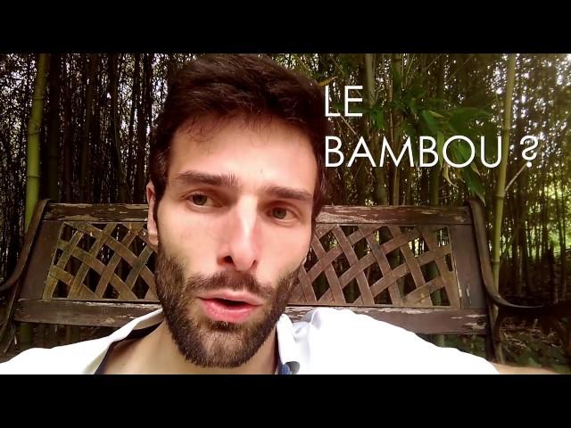 Le BAMBOU, un matériau PERFORMANT et ÉCOLOGIQUE !