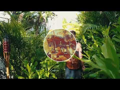 Steve Aoki, Daddy Yankee, Play-N-Skillz Elvis Crespo Dj Toretto Garcia - Azukita