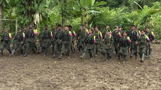 Colombia: UN says weapons handover by rebels nearly complete but doubts remain