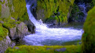Relaxing Sound of Water Flowing | Find Calm, Stress Relief or Sleep with Nature White Noise
