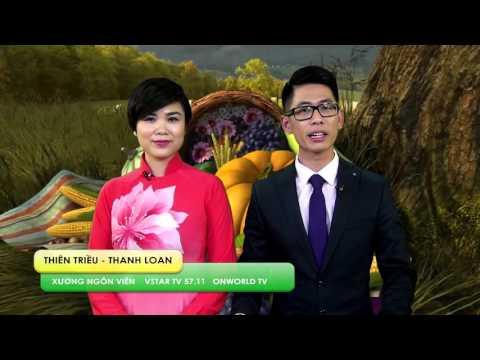 Lời Chúc Của Xướng Ngôn Viên Thanh Loan & Thiên Triều - Vstar TV - Lễ Tạ Ơn Thanksgiving 2015