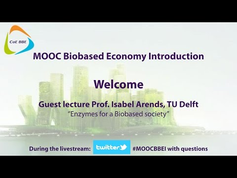 Enzymes in a biobased society by Prof. Isabel Arends - Live Stream 25 feb 2015 - 10:15 (CET)