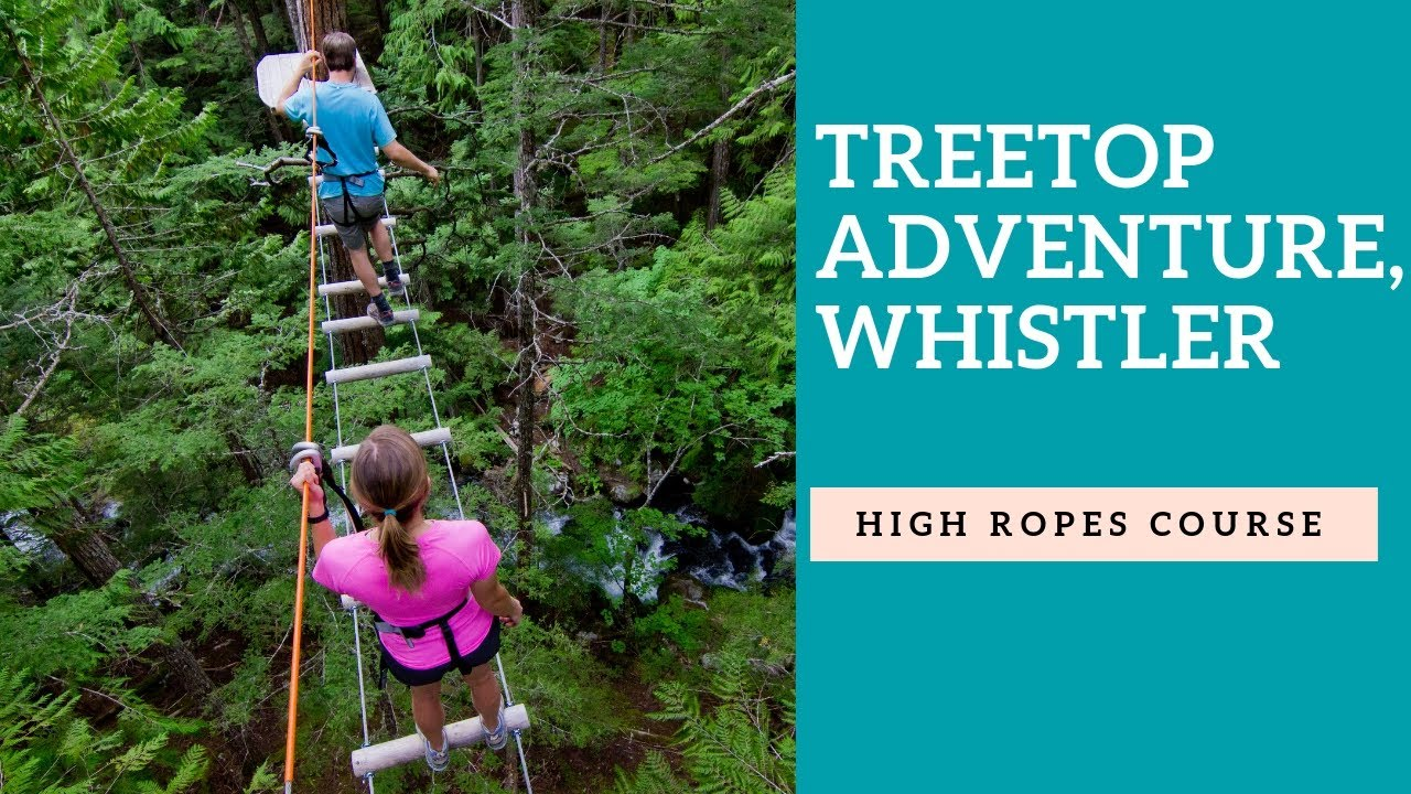 Whistler treetop adventures tour | Cougar Mountain's treetop tour