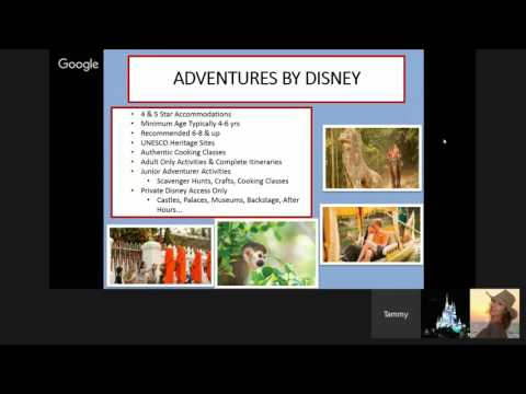 Disney 101...The Magic Is In The Details. Travel Agent Training & Tips With Tammy Walker, CTA